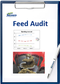 Afbeelding: website feed audit