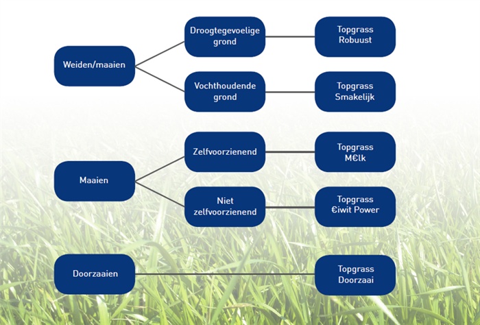 Afbeelding: Topgrass 2020 keuzeschema
